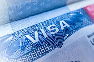 woking partner visa solicitors